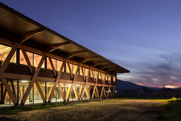 Exportadora de Miel : Oficinas y Comercios de estilo  por Dx Arquitectos