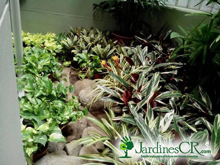 Diseño y Decoración de Jardines:  de estilo  por JardinesCR, Moderno