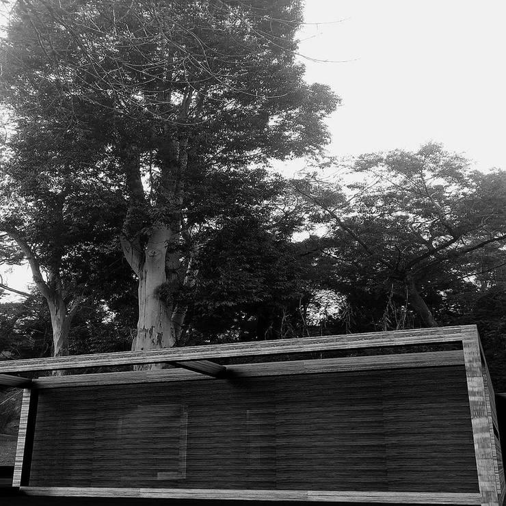 Rumah tinggal  oleh 253 ARQUITECTURA, Minimalis