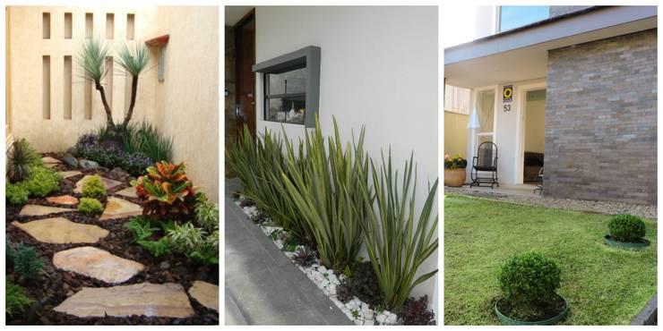 Arregla Tu Patio Por Menos De 30 Mil Pesos - Como-arreglar-un-jardin-pequeo