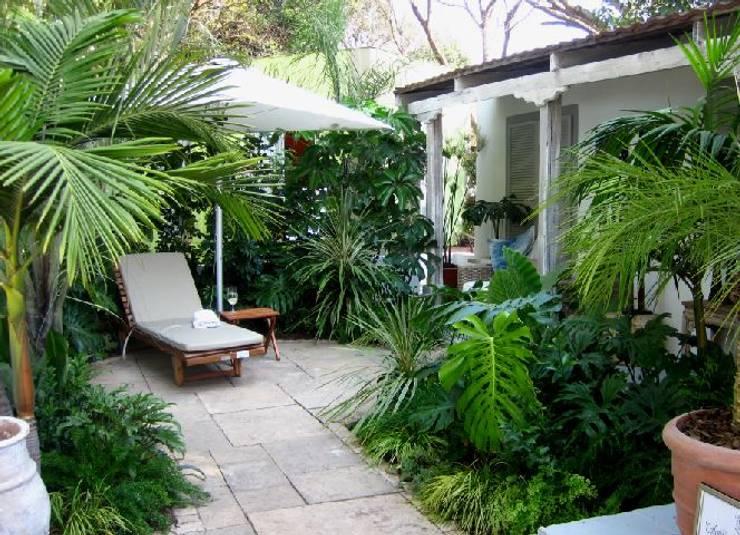 contemporary rustic coastal courtyard:  Garden by Young Landscape Design Studio