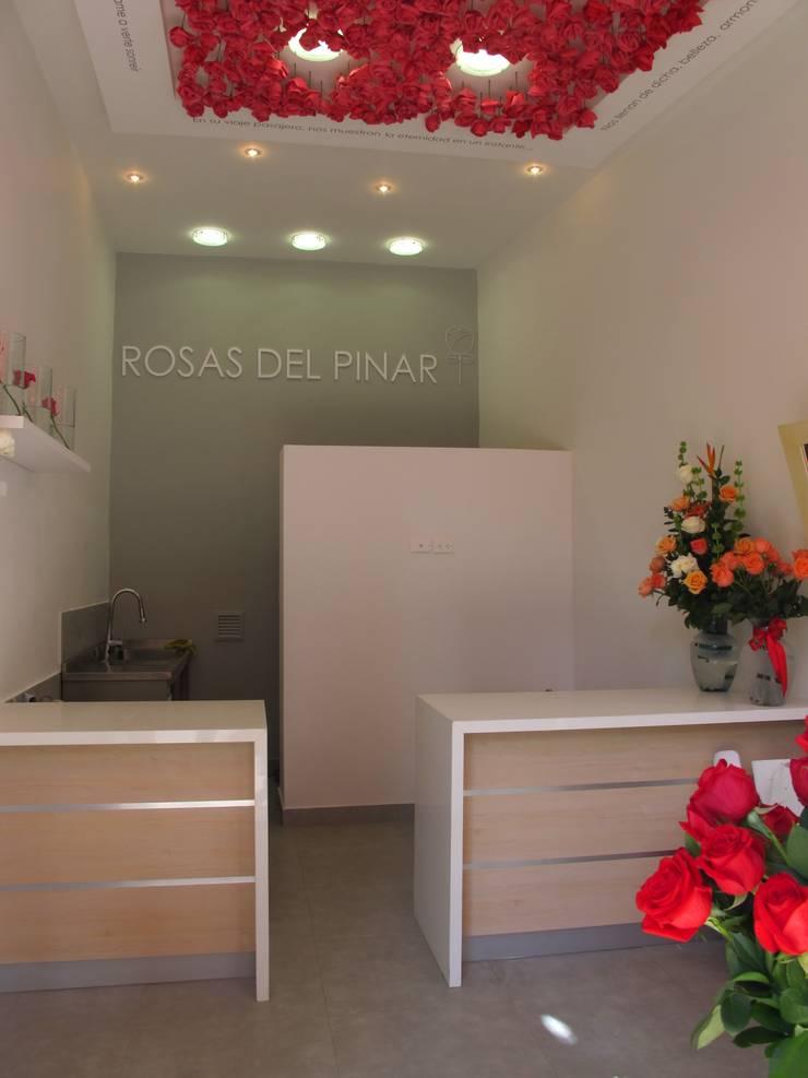Vista posterior Tienda: Oficinas y Tiendas de estilo  por Obras Son Amores, Moderno Contrachapado