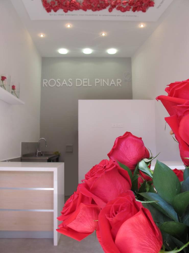 Rosas del Pinar: Oficinas y Tiendas de estilo  por Obras Son Amores, Moderno Concreto