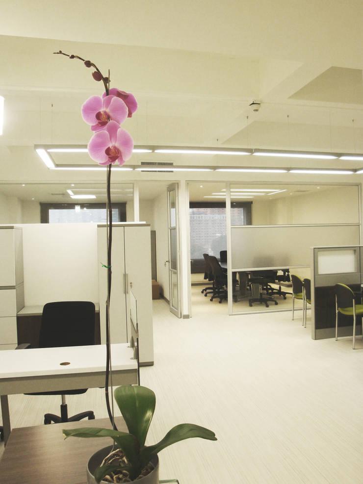 Visual desde recepción: Edificios de oficinas de estilo  por Obras Son Amores