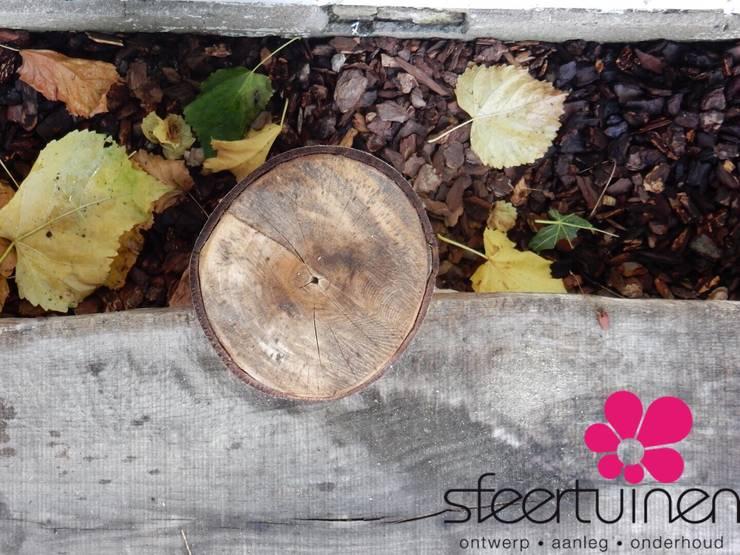 Spannende loopplank achter de beplanting. :   door Sfeertuinen, Landelijk Hout Hout