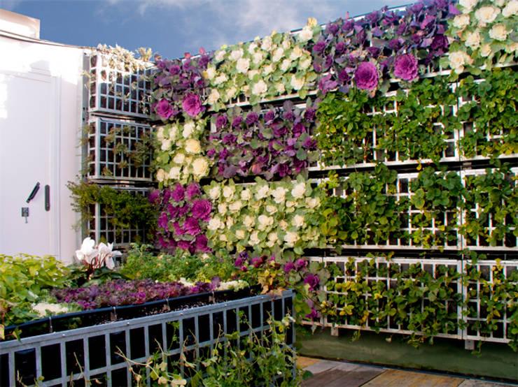 modern Garden by AIR GARDEN