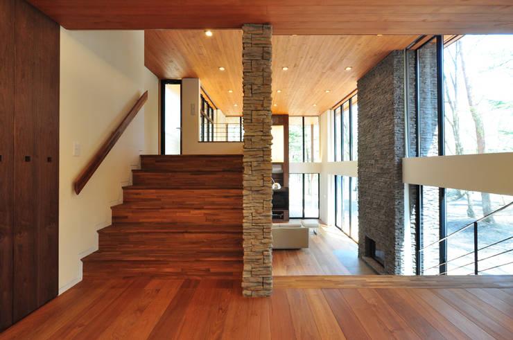 精進場川の家: 鎌田建築設計室が手掛けた廊下 & 玄関です。