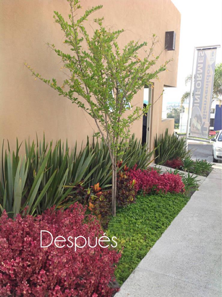 Caseta ventas después de ser intervenido: Jardines en la fachada de estilo  por Hábitas