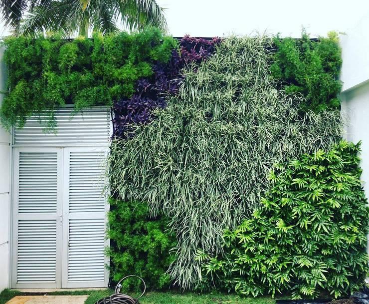 Jardin vertical: Jardines de estilo tropical por ecoexteriores