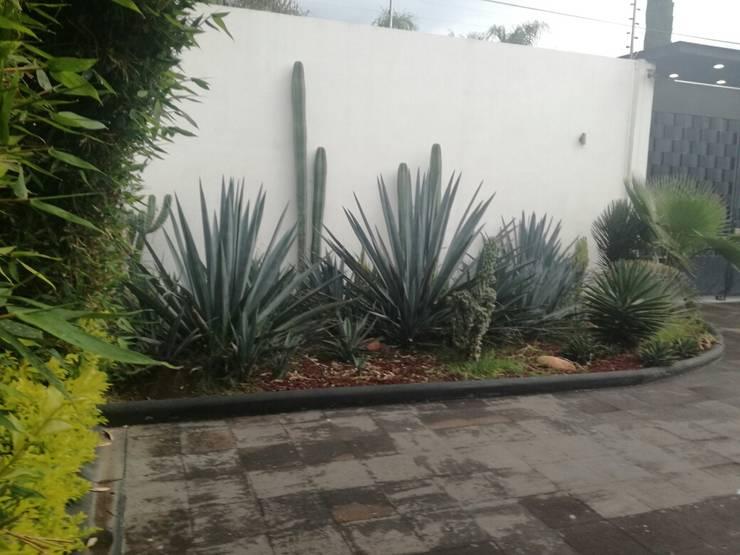 New México Style: Jardines de estilo minimalista por Arq. Beatriz Gómez G.