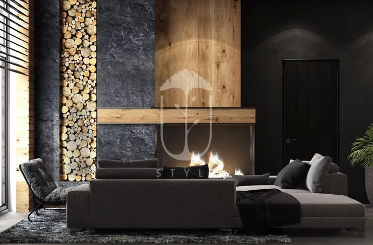 Salas de estilo rural de U-Style design studio Rural Madera Acabado en madera