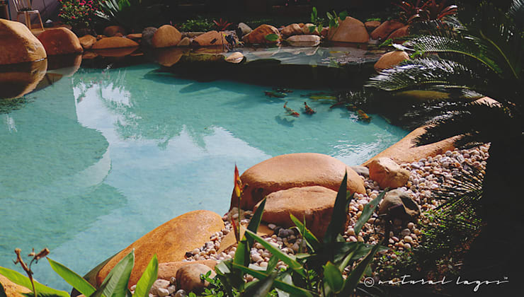 Piscina Natural: Jardins modernos por Natural Lagos