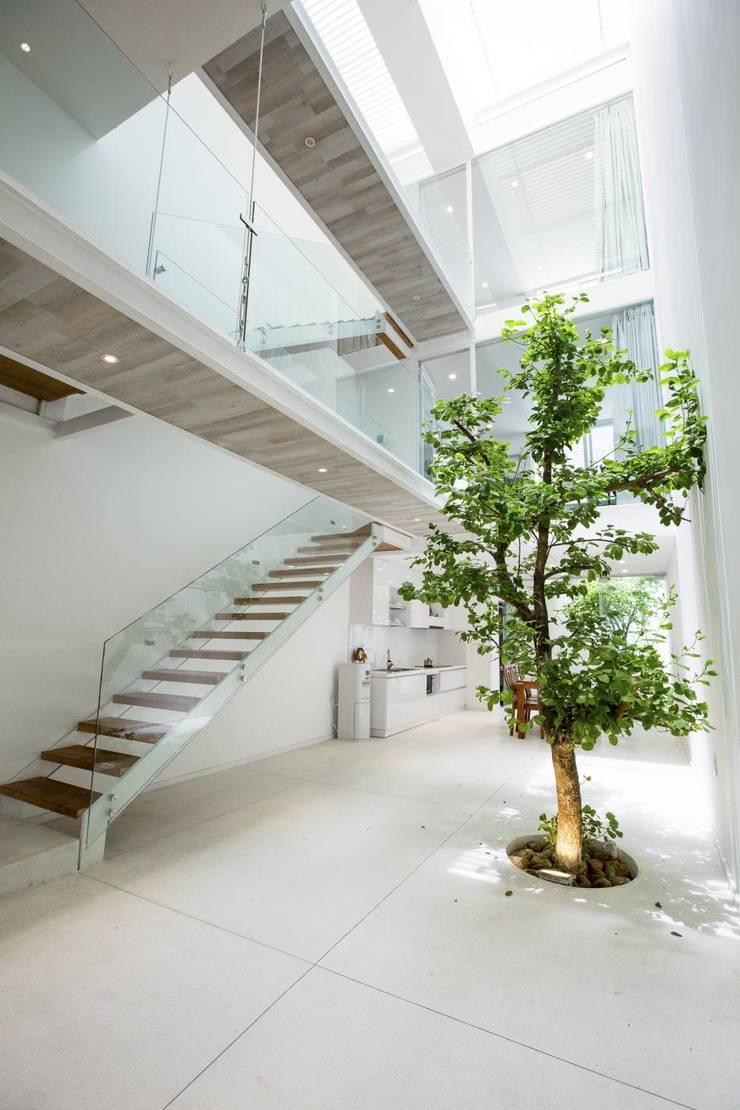 Ingresso, Corridoio & Scale in stile moderno di Công ty trách nhiệm hữu hạn ANP Moderno