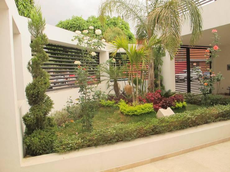 Jardin interior: Jardines de estilo  por ÖQ Arquitectos