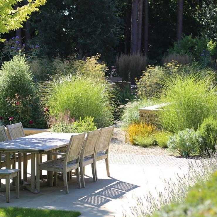 حديقة تنفيذ Andy Sturgeon Landscape and Garden Design