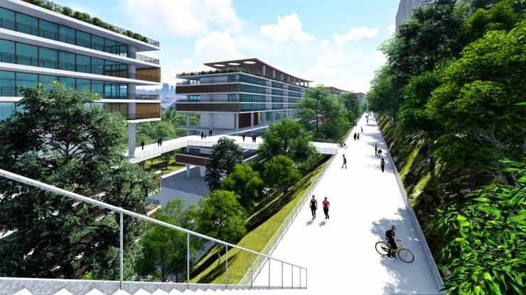 by BIM Arquitectos S.A. de C.V.