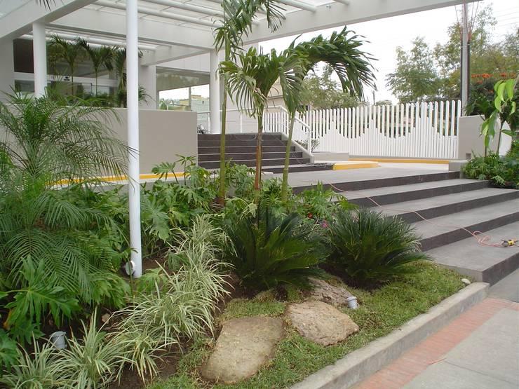 Hospital Angeles del carmen Guadalajara Acceso: Jardines de estilo topical por BARRAGAN ARQUITECTOS