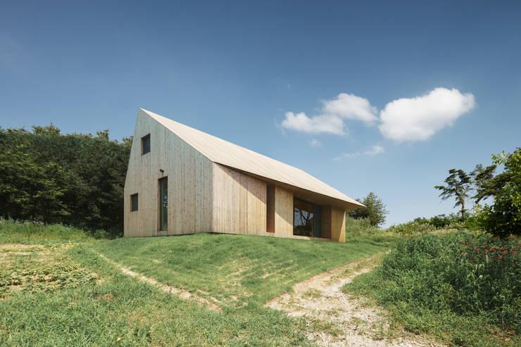 Shear House: stpmj의  주택,모던