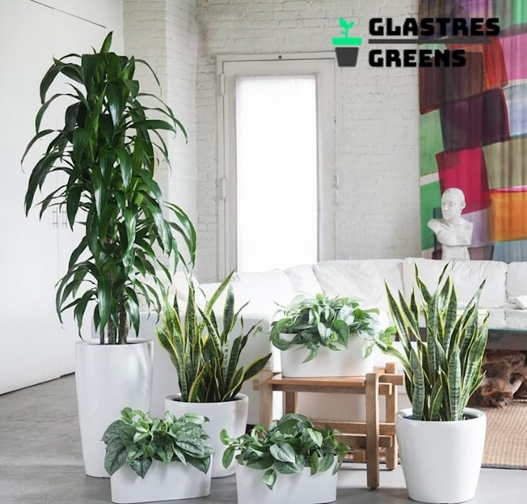 Glastres Greens:  Garden by Glastres Greens