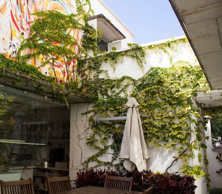 tropical Garden by Amaria Gonçalves - Design Paisagismo