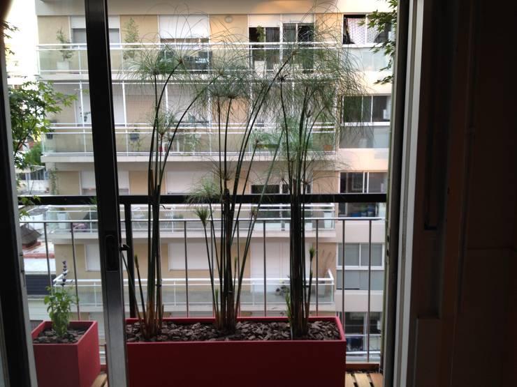 Balcon Villa Crespo-Bs As- Argentina: Terrazas de estilo  por Ib - Paisajista,