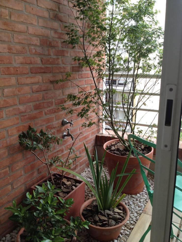Balcon Nuñez-Bs As- Argentina: Terrazas de estilo  por Ib - Paisajista