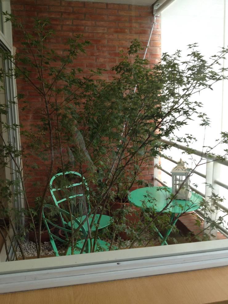 Terrasse de style  par Ib - Paisajista