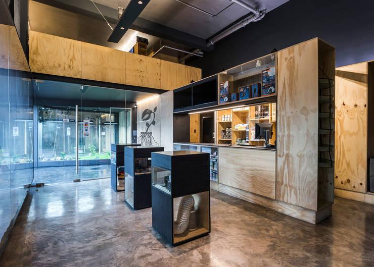 Piranha Growshop: Oficinas y tiendas de estilo  por 2712 / asociados