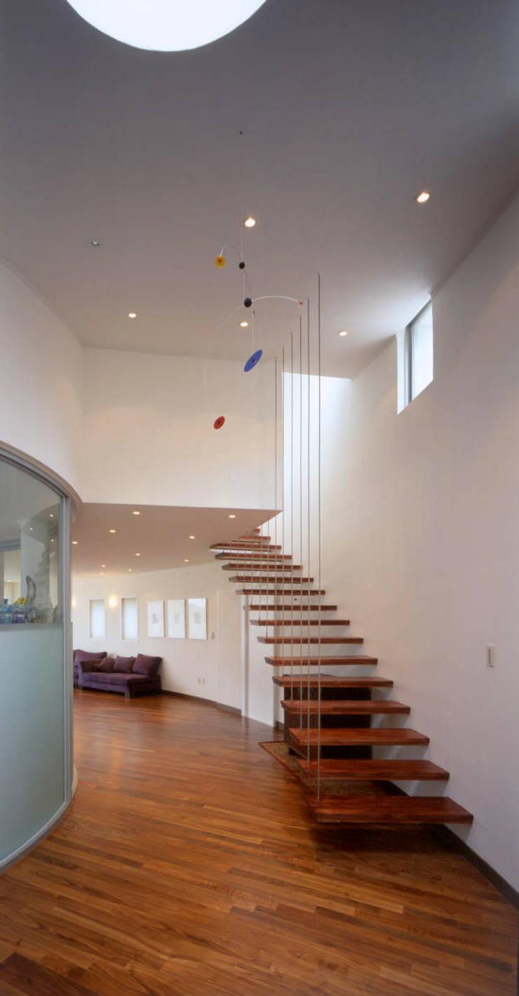 능평리하우스 (Beak): D.P.J & Partners의  계단,