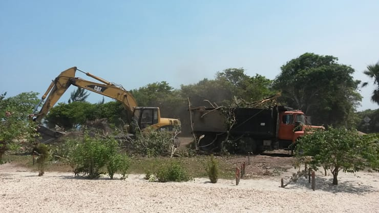 Site Clearing by Tree Felling Johannesburg