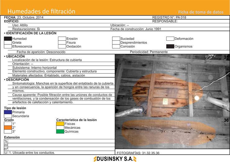 FICHA DE DATOS IV:  de estilo  por DUSINSKY S.A.