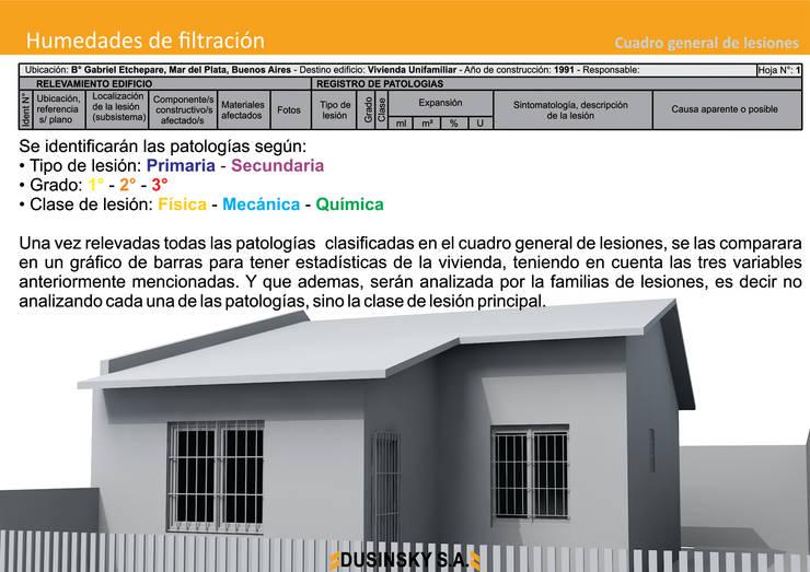CUADRO GENERAL DE LESIONES:  de estilo  por DUSINSKY S.A.