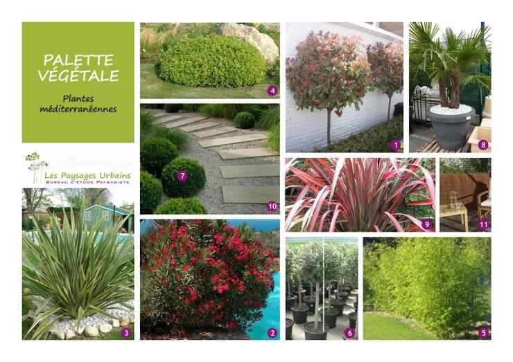 Palette végétale: Jardin de style de style Moderne par LES PAYSAGES URBAINS