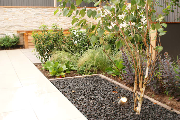 Garden Design—Cheshire Modern garden by Hannah Collins Garden Design Modern