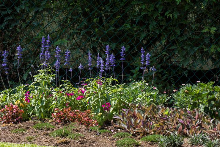 Jardín Andrea: Jardines de estilo  por Mexikan Curious