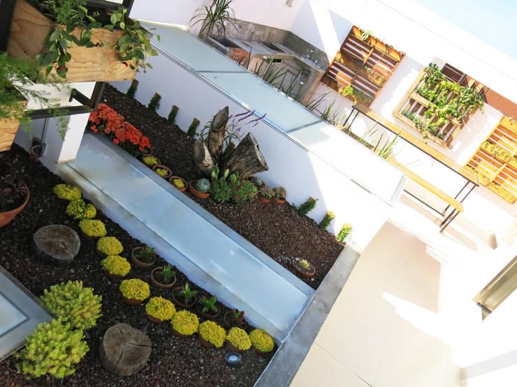 Roof Helena: Jardines de invierno de estilo industrial por Mexikan Curious