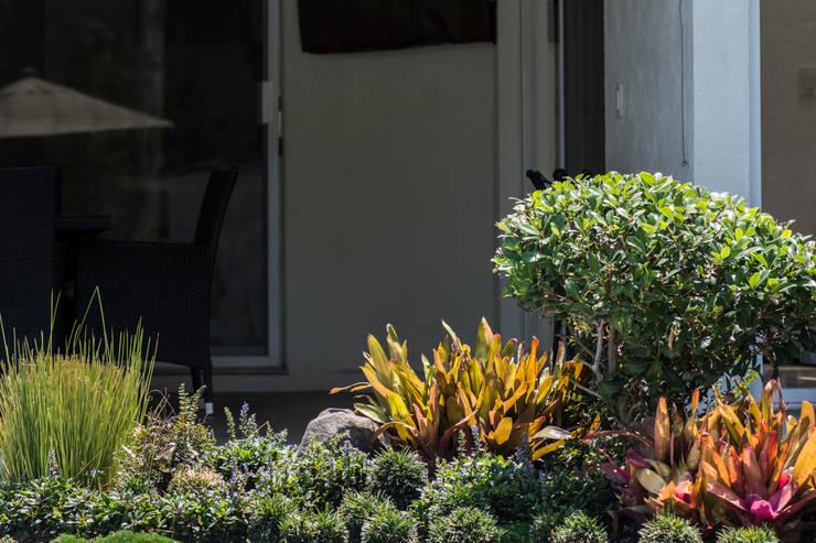 Jardín Alix: Jardines de estilo  por Mexikan Curious