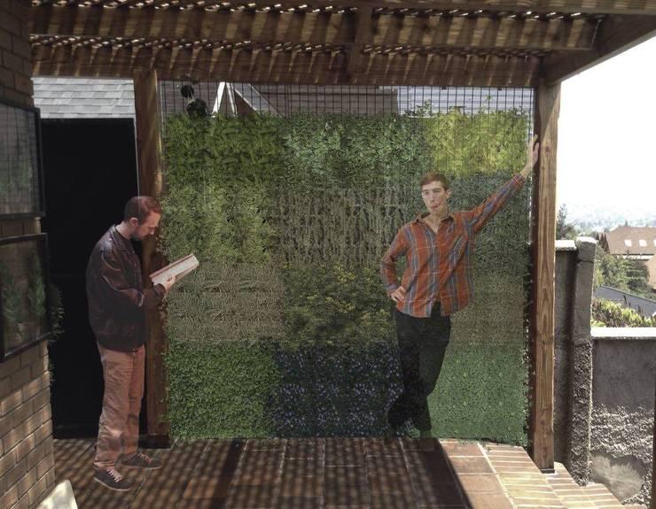 Muro verde.: Jardín de estilo  por sur arquitectura del paisaje