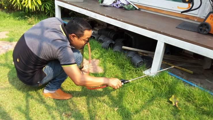 การกำจัดปลวกและแมลงต่างๆ:   by รับออกแบบพร้อมก่อสร้าง