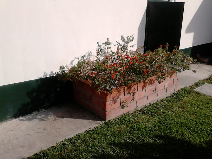 Jardinera con Plantas: Jardines de estilo  por Vida Verde