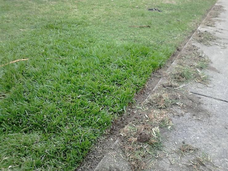 Corte de Césped a medida: Jardines de estilo  por Vida Verde
