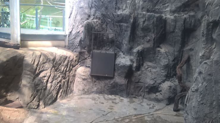 ANTES Estado del espacio seco sin rampa de acceso al mirador.: Museos de estilo  de GreenerLand. Arquitectura Paisajista y Tematización