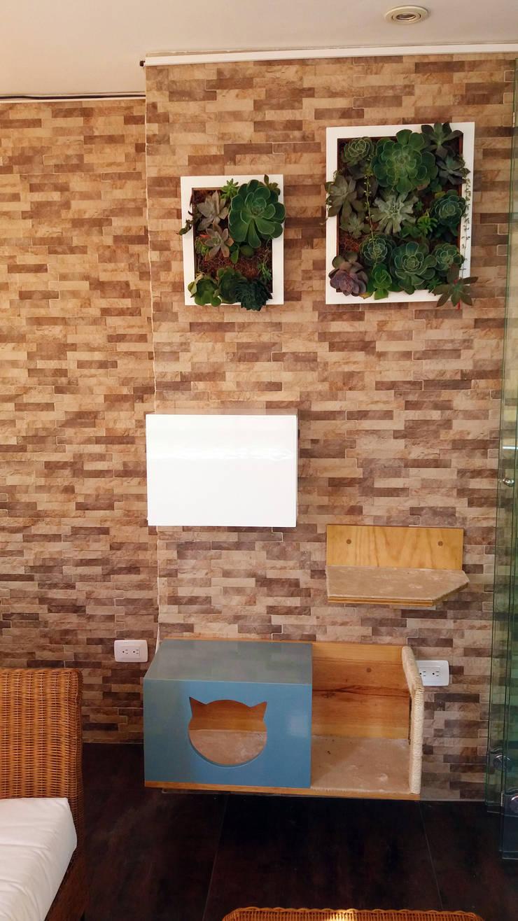 Casa Luna: Jardín de estilo  por TICKTO STUDIO