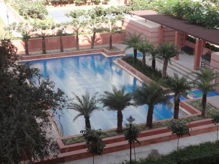 Swimming pool: modern Garden by NMP Design