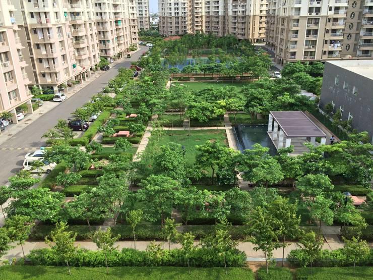 Central landscaped area: modern Garden by NMP Design