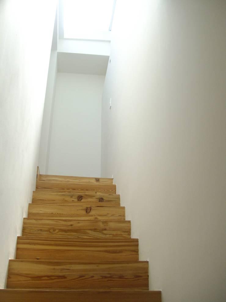 Casa Chenaut - Escalera y tragaluz: Escaleras de estilo  por NG Estudio,Moderno Madera Acabado en madera