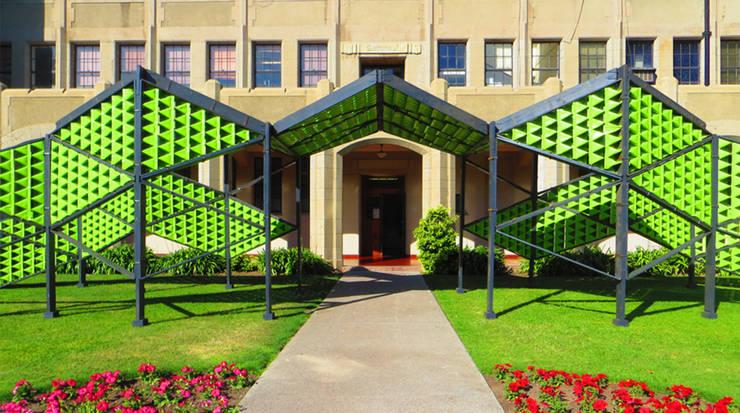 Reptilia Universidad Técnica Santa María: Estudio de estilo  por Tetralux Arquitectos