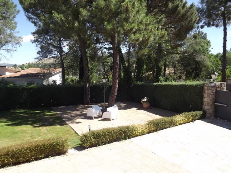 Jardines de estilo  por Almudena Madrid Interiorismo, diseño y decoración de interiores, Moderno Concreto
