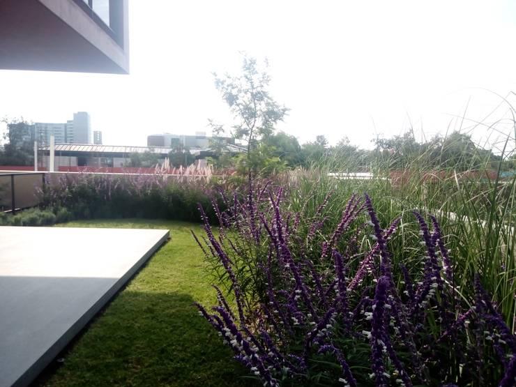 Jardines frontales de estilo  por Verde Lavanda