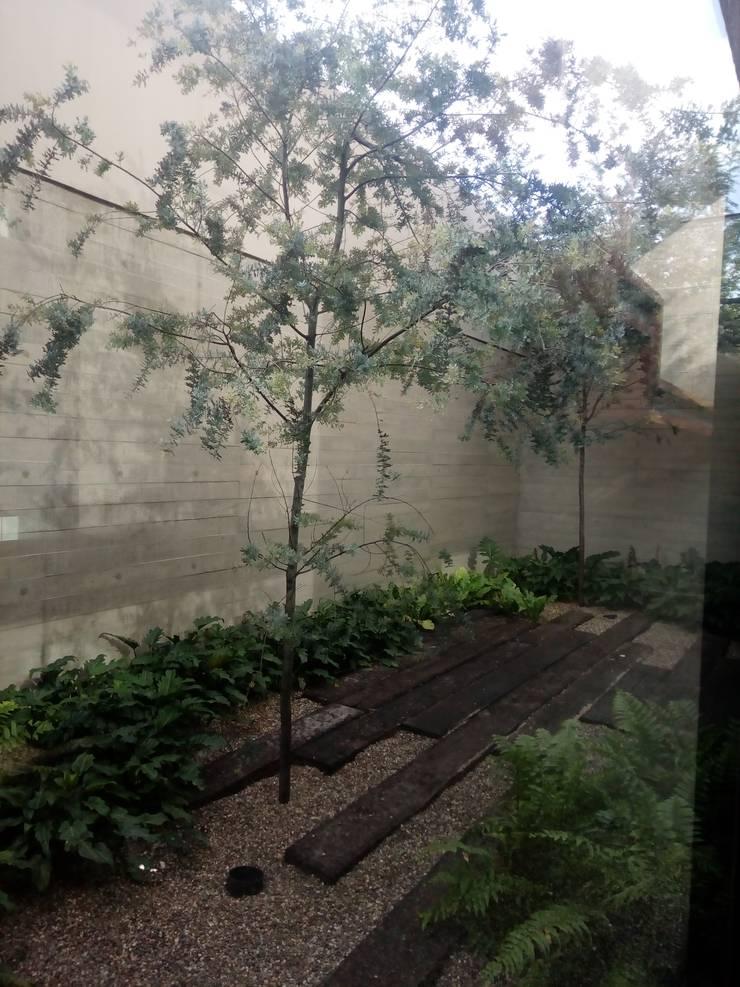 Jardines en la fachada de estilo  por Verde Lavanda,